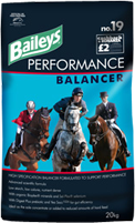 Baileys No. 19 Performance Balancer